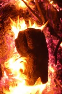 Alive/Burning. 2009; digital color photograph